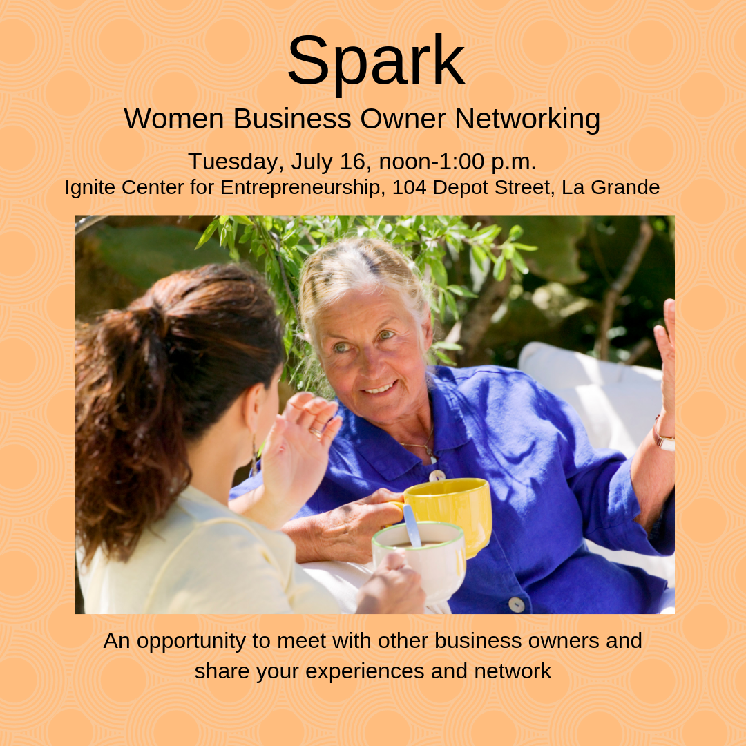 Women Business Owner Networking